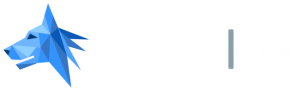 secureset logo